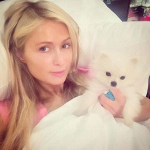 Paris Hilton's Selfie. Image source: pinterest.com